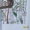 velka kniha rastlin2