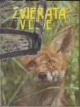 zvierata v lese
