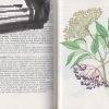 rastliny v kozmetike – antikvariat stary svet 1