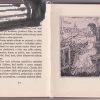 pani helene – antikvariat stary svet 1