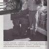 arnol schwarzenegger cesta k uspechu – antikvariat stary svet