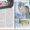 cicavce – sprievodca prirodou – antikvariat stary svet 1