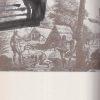 hladanie posledneho raja – antikvariat stary svet 2
