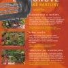 balkonove a prenosne rastliny pre kazdeho – antikvariat stary svet