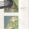 papousici a jejich chov – antikvariat stary svet 2